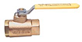250 Lb. Steam Bronze Ball Valve