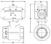 Spring Return Diagram PA 2-Piece Stainless Ball Valve