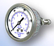 303LFW Panel Mount All Stainless Steel Gauge